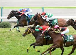 【福島牝馬ステークス 2015】予想印と買い目〜荒れるか!?〜