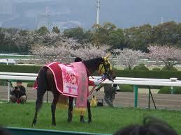 【桜花賞 2015】最終追い切り評価と枠順加味した投資対効果な軸馬予想