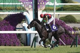 【天皇賞 春 2015】有力馬最終追い切り評価と最適な軸馬予想