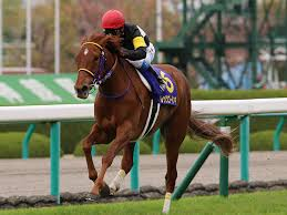 【オークス(優駿牝馬)予想 2015】レッツゴードンキを紐解く〜VS ルージュバック〜