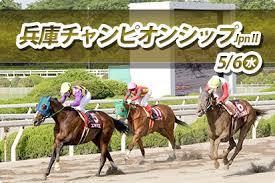 【兵庫チャンピオンシップ 2015】予想印と買い目