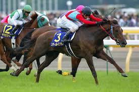 【オークス(優駿牝馬)2015】有力馬最終追い切り評価と枠順確定後の軸馬予想