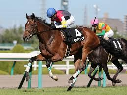 【札幌記念2015予想】データ&有力馬1週前追い切り考察