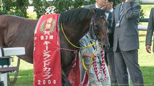 【キーンランドカップ2015予想】有力馬最終追い切り考察