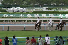 【小倉2歳ステークス2015】シュウジ等有力馬最終追い切り考察