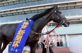 【神戸新聞杯2015】予想|リアルスティールは△評価!