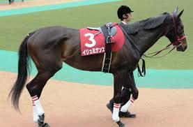 【府中牝馬ステークス2015】予想|秋華賞資金稼ぎ|荒れるか?!