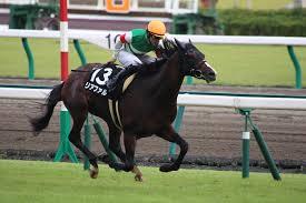 【菊花賞2015】予想|リアファルは対抗評価・軸はこの馬!