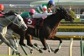 【府中牝馬ステークス2015予想】データ&最終追い切り考察