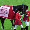 【エリザベス女王杯2015予想】第40回目の戴冠はこの馬だ!