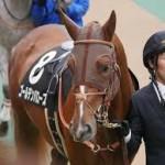 【武蔵野ステークス2015予想】ゴールデンなユメでモーニン?
