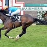 【チャレンジカップ2015】予想|阪神ジュベナイルの資金稼ぎ!