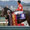 【阪神ジュベナイルフィリーズ2015予想】データ|枠順・騎手等