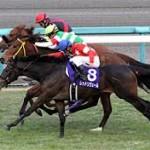 【阪神ジュベナイルフィリーズ2015予想】注目馬と土日結果