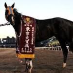 【東京大賞典2015予想】有力馬最終追い切り考察|土日結果