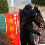【京都金杯2016予想】データ考察|買える枠順・騎手・年齢等
