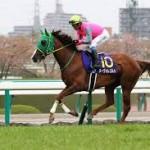 【産経大阪杯2016予想】ラブリーデイ等有力馬最終追い切り考察