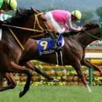 【産経大阪杯2016予想】データ考察|買える枠順・レース過程等