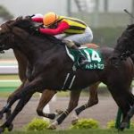 【函館スプリントステークス2016予想】有力馬最終追い切り考察