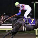 【シリウスステークス2016】予想|最終追い切りからこの馬で勝負!