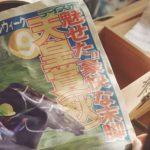 【天皇賞・秋2016予想】サインは9!1999年勝ち馬のスペシャルウィークがカギを握る?