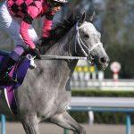 【府中牝馬ステークス2016予想】データ傾向|買える枠順等