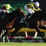 【マイルチャンピオンシップ2016予想】出走予定馬最終追い切り等まとめ