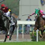 【香港国際競走2016まとめ】予想|出走予定馬|カップ・マイル・スプリント・ヴァーズ(かーるさん考察更新)