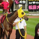 【クイーンカップ2017予想】データ傾向分析|阪神JFで3着以内の馬は連対率100%!?