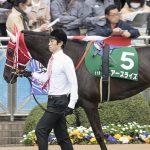 【京都牝馬ステークス2017予想】データ分析|意外と差しが決まる?前走上りに注目