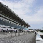 【阪神牝馬ステークス2018】最終予想|あの実績馬の末脚に賭ける!