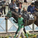 【エリザベス女王杯2018|最終予想】鞍上を信頼してあの馬を本命に勝負!