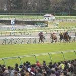 【オークス2017予想】出走予定馬&想定騎手東京芝2400mデータ
