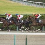【神戸新聞杯2018予想|最終結論】土曜の馬場傾向から「あの馬」を本命に!