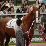【神戸新聞杯2017予想】データ分析|ダービー馬レイデオロは素直に重視!
