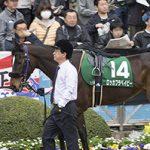 【武蔵野ステークス2018|最終予想】抜群の末脚を持つあの馬を本命に勝負!