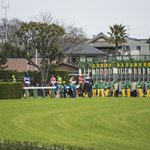【神戸新聞杯2018予想|有力馬分析】勝つのはダービー馬か?皐月賞馬か?それとも・・