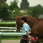 【皐月賞2019】データ分析予想|過去の傾向から買えるのはどの馬?