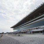 【プロキオンステークス2019】人気馬分析予想|本気で勝ちに来るのはどの馬?