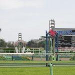 【チャンピオンズカップ2019】最終予想|ゴールドドリーム本命で勝負!