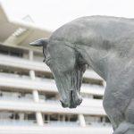 【神戸新聞杯2019】人気馬分析予想|サートゥル、ヴェロックスで決まりなのか?