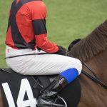 【日経新春杯2020】人気馬予想|混戦のハンデ戦で狙えるのはどの馬?