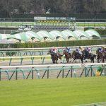 【京成杯オータムハンデ2019】最終予想|状態の良さそうなあの馬を本命に勝負!