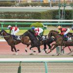 【桜花賞2019】人気馬分析予想|阪神JF上位組のどの馬が狙い目なのか?