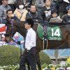 【中日新聞杯2019】人気馬予想|大混戦模様!信頼できるのはどの馬なのか?